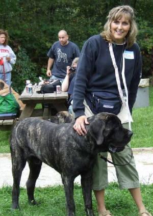 Northeast Ohio Mastiff Picnic